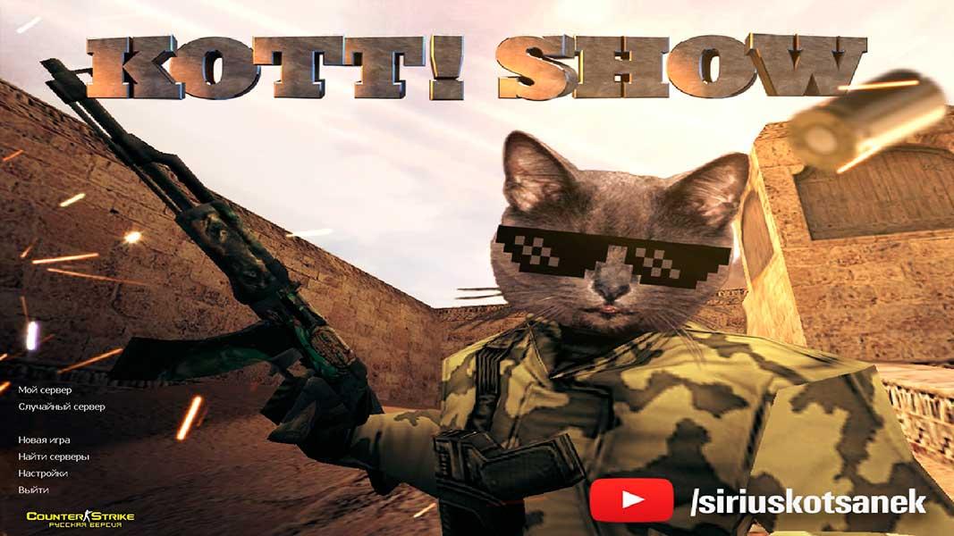 Для котов в cs